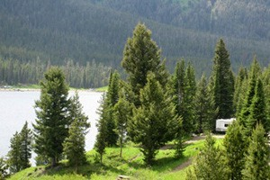 National Forest Camping & RV Sites - Book ONLINE :: Offering clean, well-maintained RV & camper sites near Big Sky, Bozeman, Livingston & Yellowstone, along rivers and creeks. Can BOOK ONLINE, way less expensive then private.