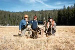 Beartooth Plateau Outfitters - guided hunts :: Utilizing legendary habitat in the rugged Beartooth Wilderness near Cooke City. Full-service, horseback pack-in elk hunts. Comfortable camps, gentle horses, top guides!