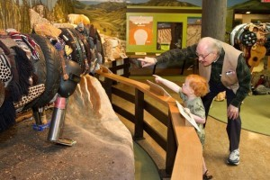 Museum of the Rockies - living history tours :: Recognized as one of the world's finest research and history museums. Renowned for our dinosaur collection, fossils, permanent & rotating exhibits, history farm & kids events.