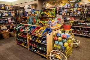 Museum of the Rockies - best gift shop in Bozeman :: Recognized as one of the world's finest research and history museums. Renowned for our dinosaur collection, fossils, permanent & rotating exhibits, history farm & kids events.