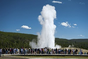 Have a Blast at Yellowstone National Park :: Discover the magic of the world's first national park! Experience this extraordinary American wonder, full of geysers, hot springs, abundant wildlife and lots to see and do.