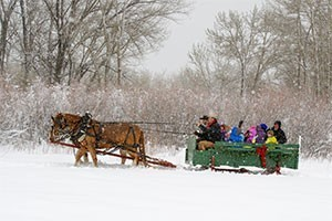 Sunrise Pack Station - sleigh rides for all ages :: Fun for families, select from 30-minute or 1-hour rides through Bozeman farmland and East Gallatin River, featuring deer, eagles and much more. Just $5-$25/person. Fun memory