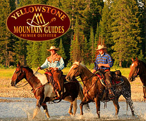 Horseback Day rides or Overnight Pack Trips