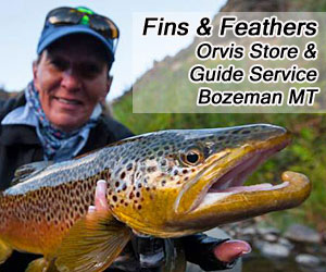 Fins and Feathers - Lodging & Fly Fishing Packages : 2010 Orvis-Endorsed Fly Fishing Outfitter of the Year, offering guided fly fishing trips throughout southwest Montana on all major rivers, creeks & waterways. Top-rated shop, online reports and blog, combination Lodging/Fishing packages and excellent free advice from our helpful staff.