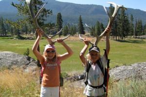 Yellowstone Safari - See Wildlife in all seasons