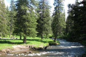 Moose Creek Flat Campground - Book ONLINE