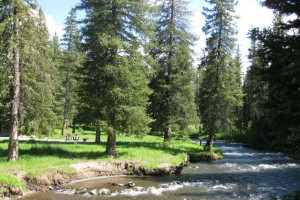 Swan Creek Campground - Book ONLINE