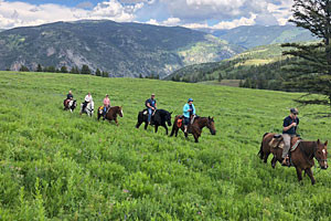 Rockin HK Outfitters - trail & wagon rides