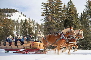 320 Ranch Sleigh Ride & Appetizers - in Big Sky