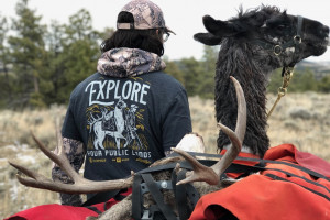 Montana Llama Guides | Llamas Carry The Weight