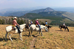 Rockin HK Outfitters - Carriage & Trail rides