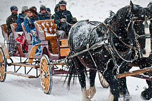 Rockin HK Outfitters - Carriage rides & snowshoes