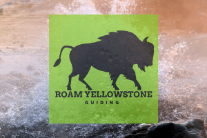 Roam Yellowstone Guiding