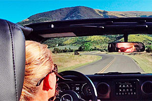 Scenic Driving - Rocky Mountain Jeep Rentals