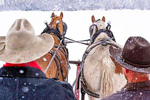 Sunrise Pack Station - sleigh rides for all ages