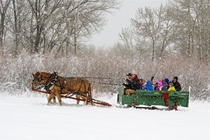 Sunrise Pack Station - sleigh rides right now