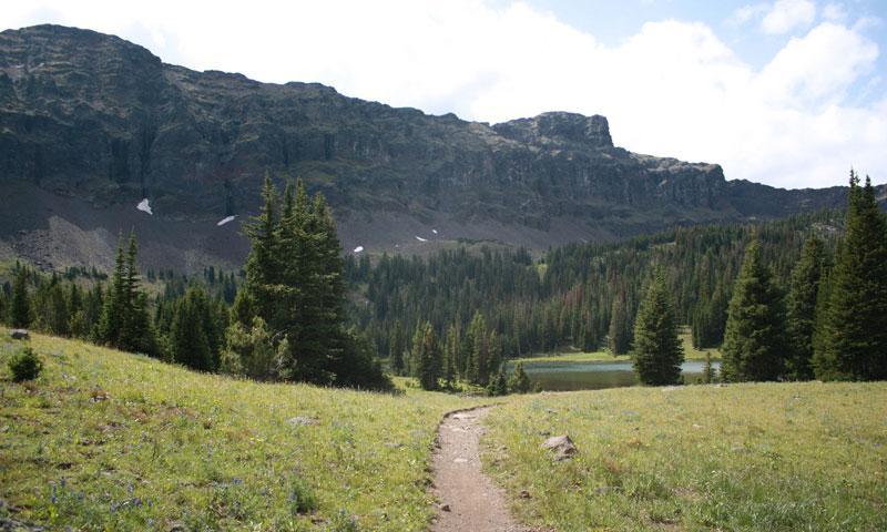 Hiking Trail in Bear Canyon near Bozeman