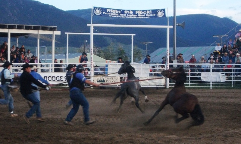 Home of the Champs Rodeo