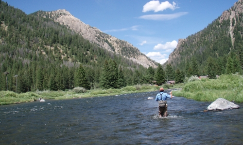 Madison River Bozeman Montana