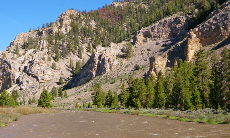 Gallatin River Yellowstone National Park