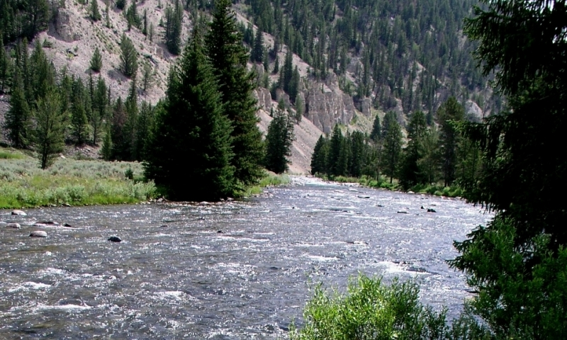 Gallatin River Montana Fly Fishing Camping Whitewater