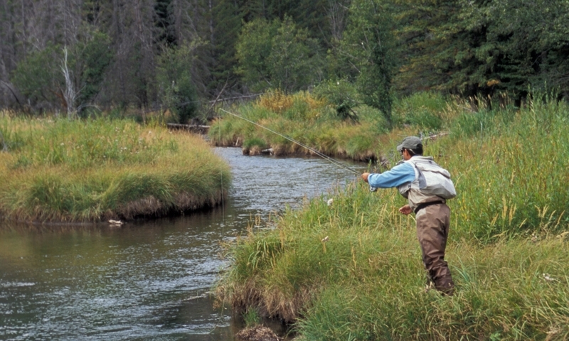Fly Fishing the West Boulder River