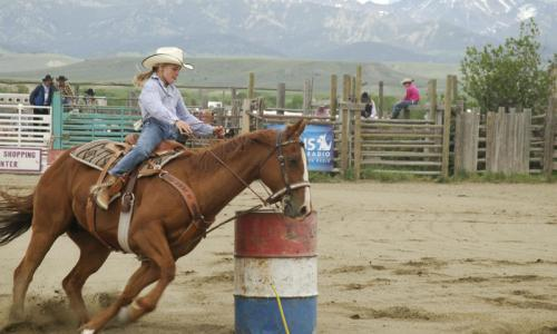 Wilsall Rodeo Montana