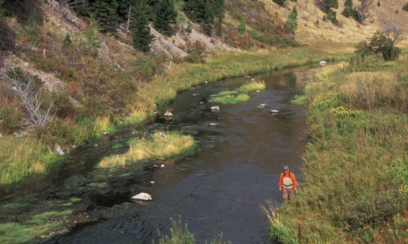 Boulder River Fly Fishing Montana