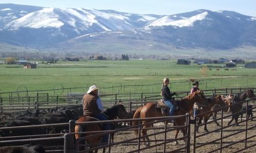 Gallatin Gateway Montana