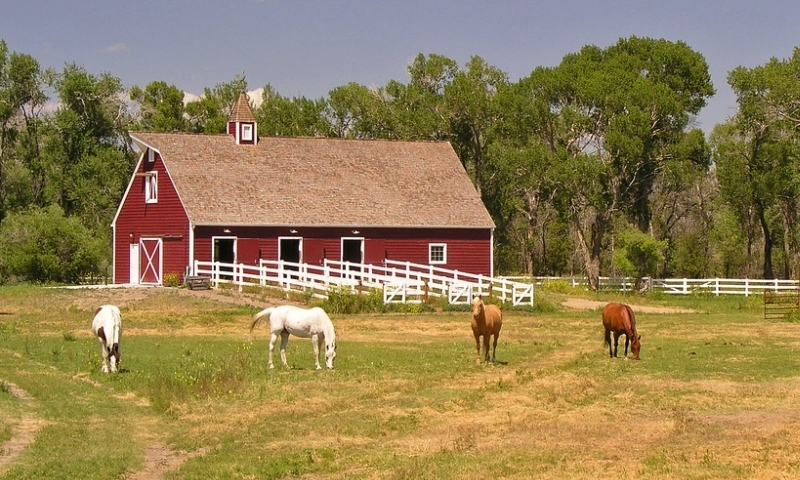 Three Forks Montana Ranch Horses Property