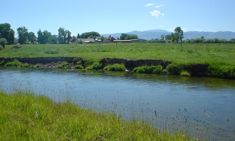 Ruby River Montana