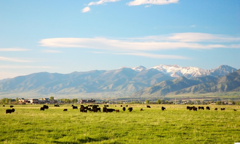 Gallatin Valley Bridger Mountains Bozeman Montana
