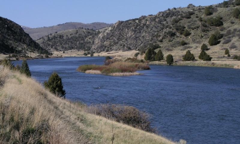 The Madison River near Bozeman, Montana.