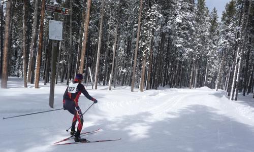 Bozeman Montana Nordic Skiing