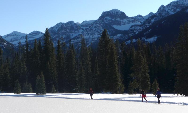 Cross country skiing with friends in Bozeman