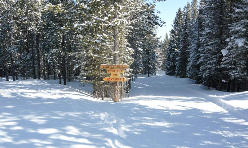 Cross Country Ski Trail in Montana