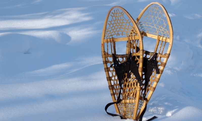 Snowshoeing Winter