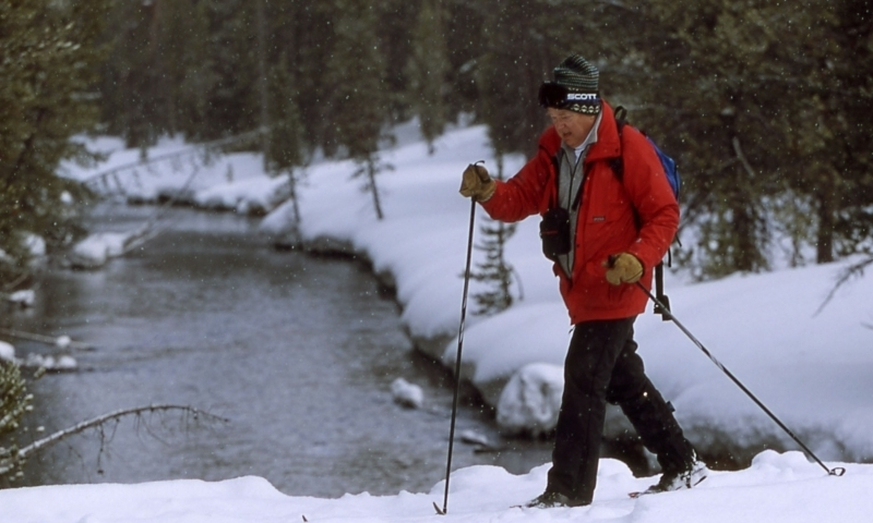 Cross Country Skiing in Yellowstone