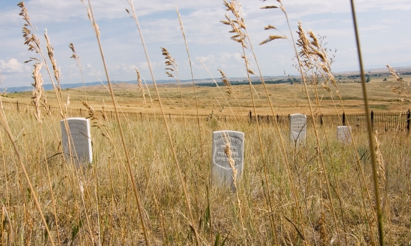 an overview of the battle of the little bighorn Discover librarian-selected research resources on battle of little bighorn from the  read preview overview  story of the battle of the little bighorn.