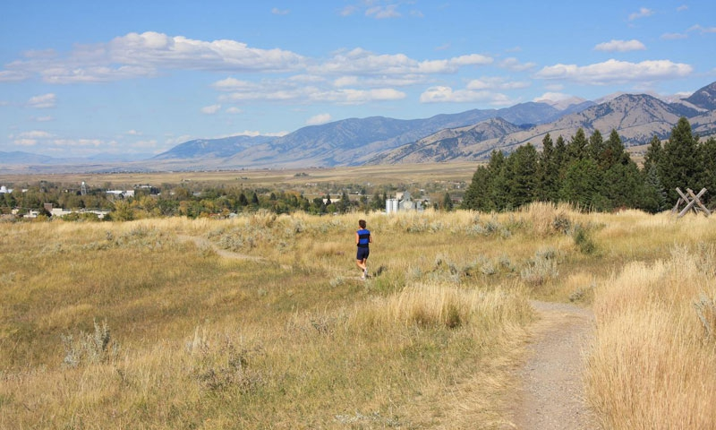 The Bozeman Trail