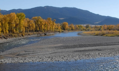 livingston montana fly fishing alltrips