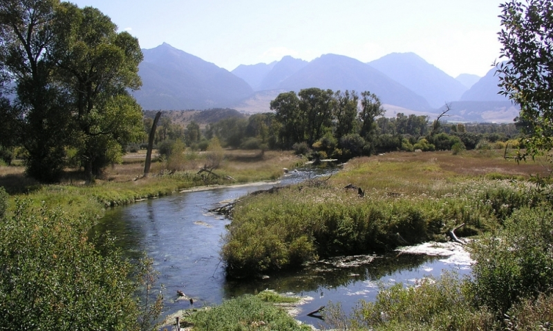 livingston montana fly fishing museum of southern