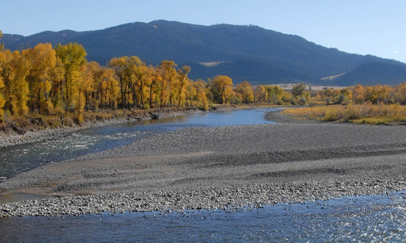 Yellowstone River Livingston Montana