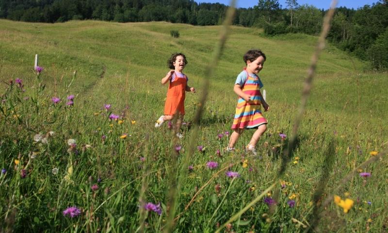 Kids Family Hiking