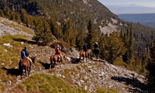 Bozeman Horse Pack Trips