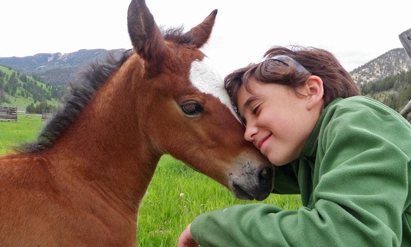 320 Ranch Horseback Riding Montana