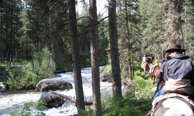 Horseback Riding in Gallatin National Forest