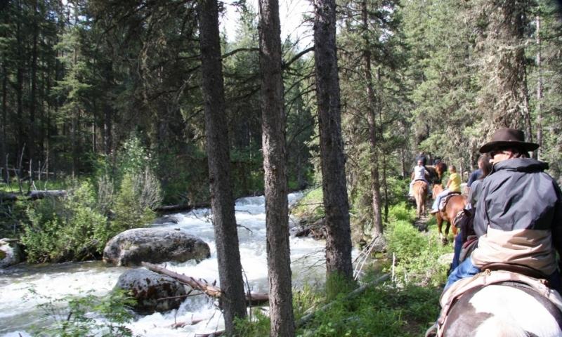 Bozeman MT Horseback Riding