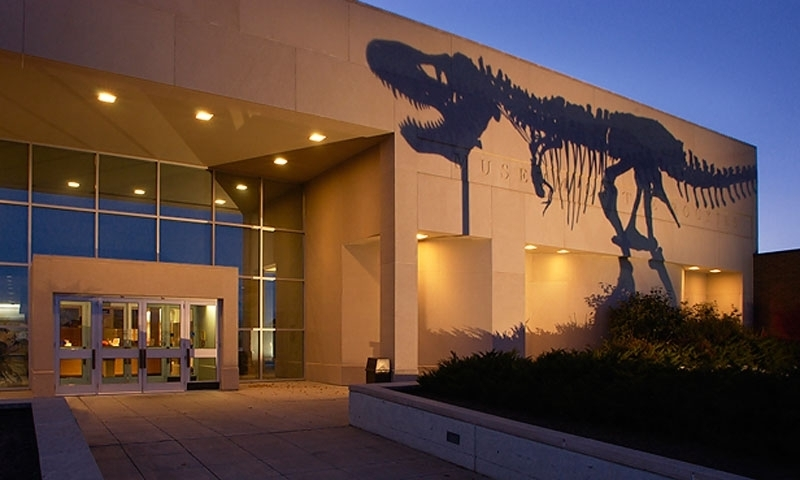 Shadow of Mike the Dinosaur in front of Museum of the Rockies