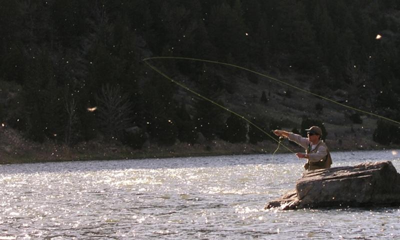 Bozeman Montana Activities